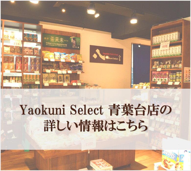 Yaokuni Select 青葉台店