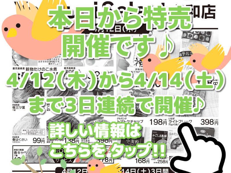 本日から特売開催!