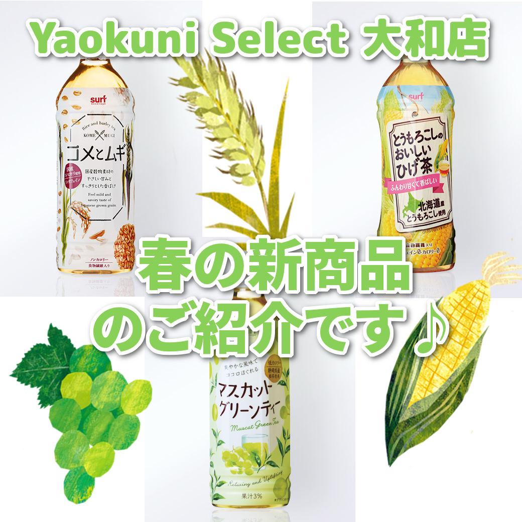 春の新商品ご紹介